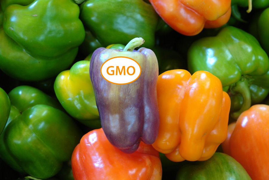 Courtenay City Council Discusses Labeling Non-GMO Products